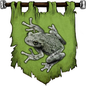 The Symbol of Wastri - Gray toad